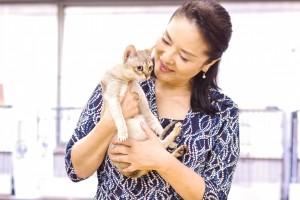 """シンガプーラのルーちゃん Singapura Cat """"LUGH"""""""