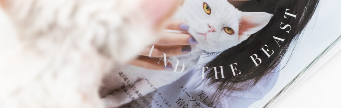 ハーパーズ バザー7・8月合併号でファッション誌デビューしたデボンレックスのDIANA