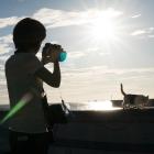 Sakuraquiet Photography 2016 Memorial - Sakura Shooting
